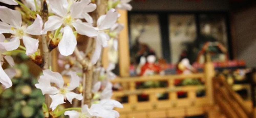 弥生月次祭(一般参列)